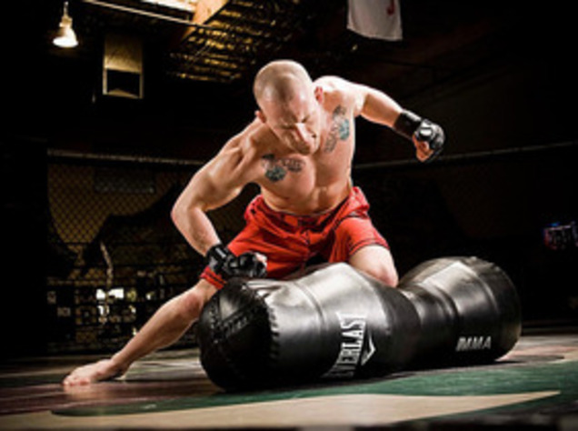 Image result for mma training