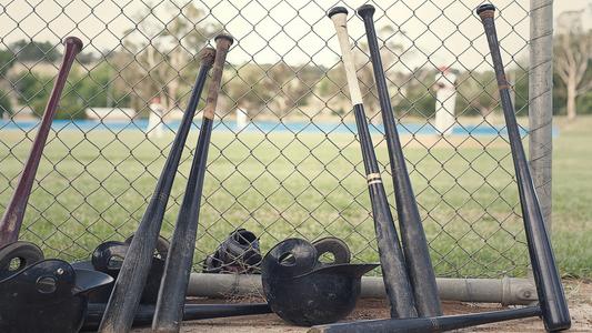 The Best Wood Baseball Bat | Best Wood Brand and Bats